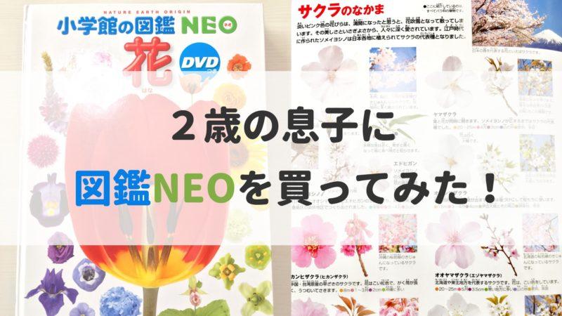 図鑑 NEO(ネオ) 2歳